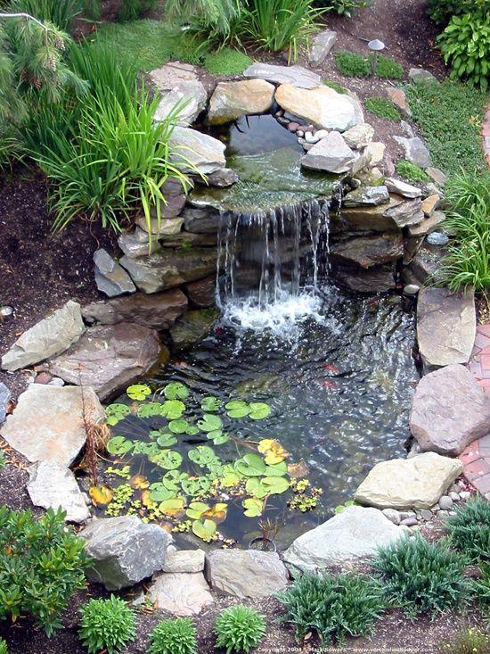 Best 25+ Coy pond ideas on Pinterest | Koi ponds, Koi pond design ...
