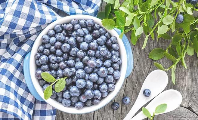 Heidelbeeren: Gesunde Superfrüchte und Heilpflanze