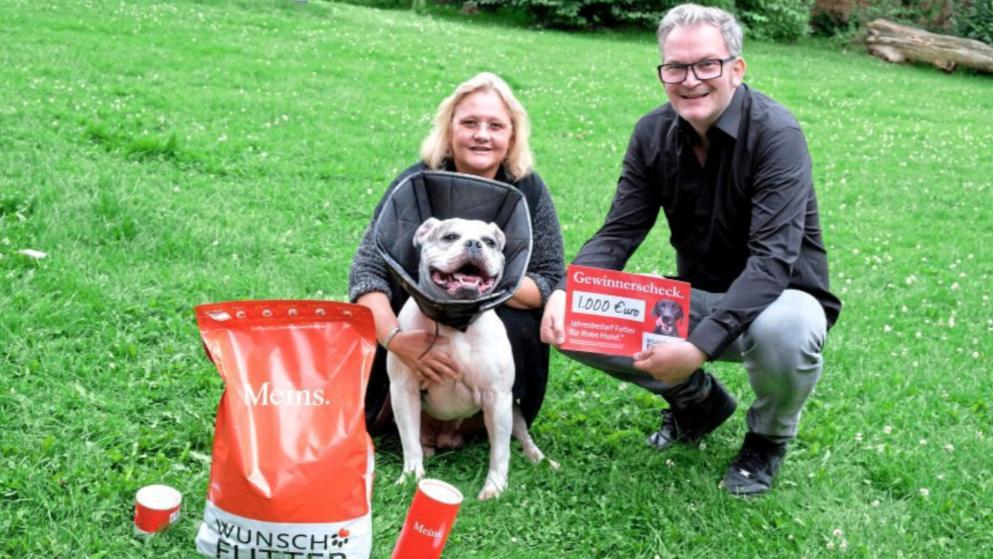 Futter Firma macht Tierheim Hund satt