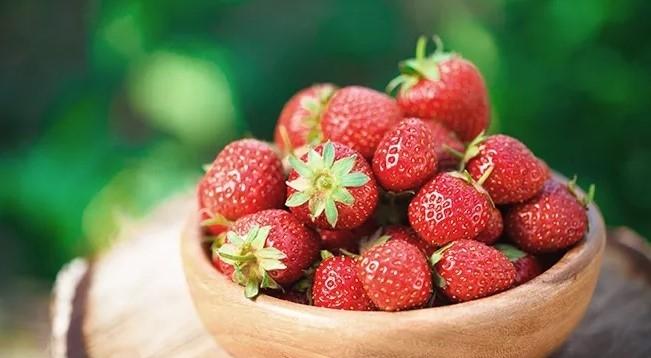 Die Erdbeer-Saison ist eröffnet!