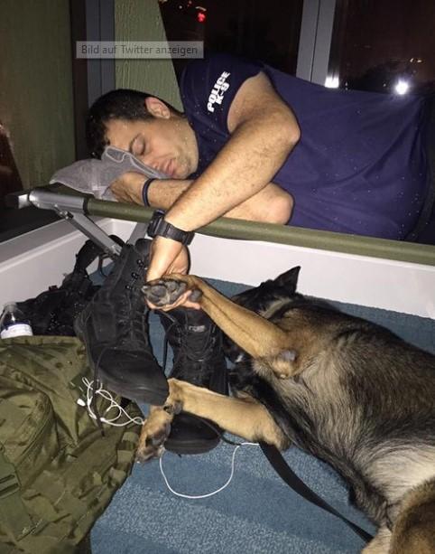 Das heimlich geschossene Foto vom Polizisten geht aus einem besonderen Grund um die Welt.