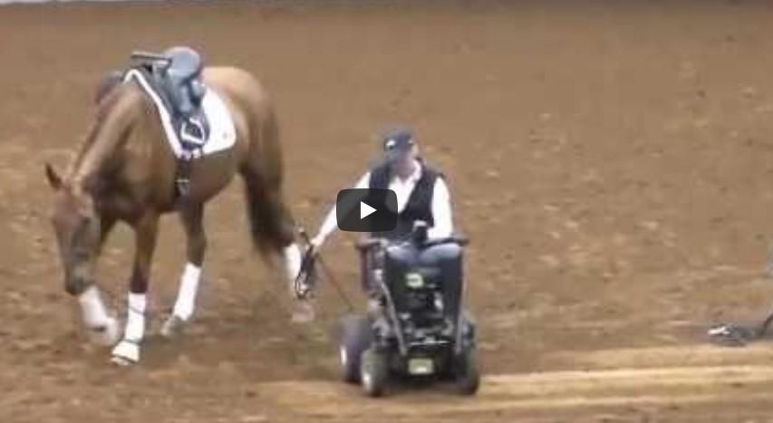 Das Pferd läuft auf die Frau im Rollstuhl zu, was dann passiert, lässt das Publikum nur noch staunen.