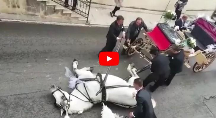 Zusammenbruch auf offener Straße: Die Fußgänger zücken sofort ihre Kameras.