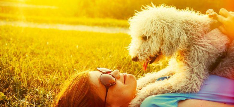 Wahre Hundeliebe – Um ihrem Hund das Leben zu rettet, verkauft eine Frau ihren gesamten Besitz!