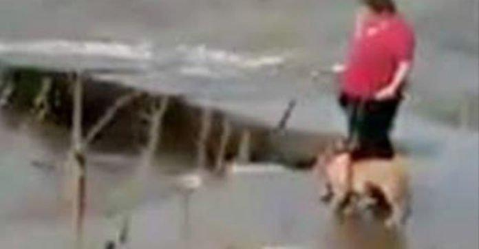 Eine Frau spaziert mit ihrem Hund entlang eines stürmischen Sees und wirft ihn dann wir Abfall ins Wasser.