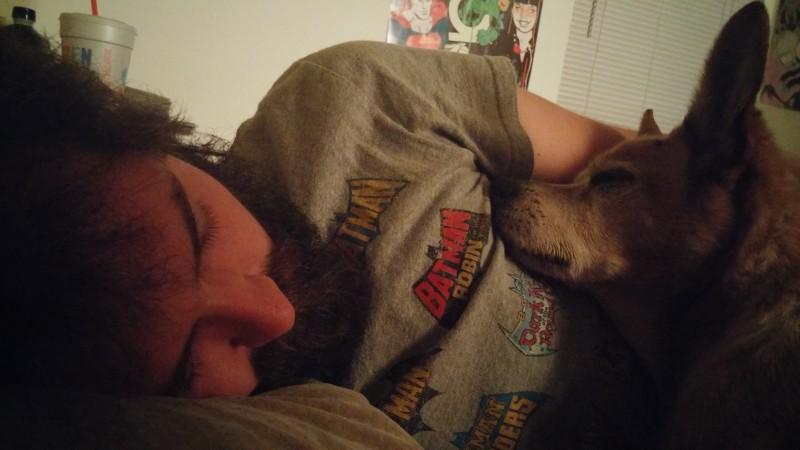 Hunde gehören nicht ins Bett?! Nach diesem Artikel wirst du froh sein, deinen Hund immer da zu haben.