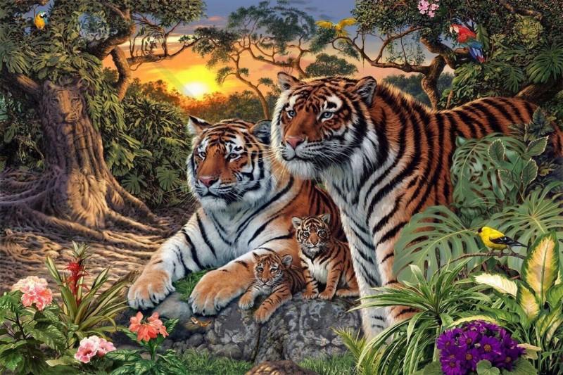Besonders kniffliges Rätsel: Wie viele Tiger sind in diesem Bild?