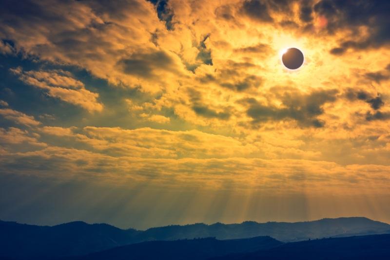 Menschen sind von Sonnenfinsternissen fasziniert … aber wie reagieren Tiere eigentlich?