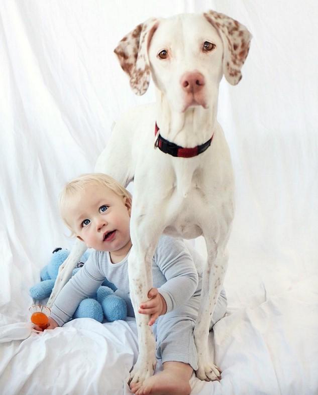 Dieser Hund Wurde Von Einem Baby Gerettet! Es Könnte Nicht Rührender Sein!