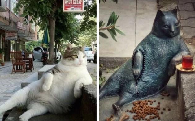 """Istanbuls verstorbener """"Meme Katze"""" wurde nun die Ehre zuteil, als Statue verewigt zu werden"""
