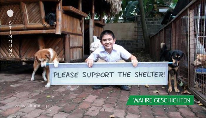 9-Jähriger baut fast ohne Hilfe der Eltern ein eigenes Tierheim auf.