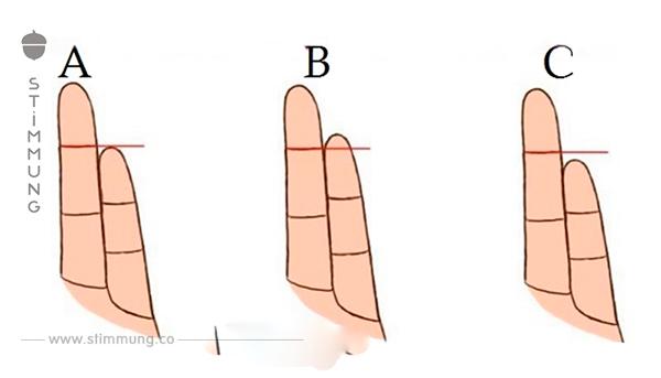Was die Länge des kleinen Fingers über den Charakter aussagt