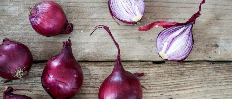 9 alltägliche Lebensmittel als Medizin