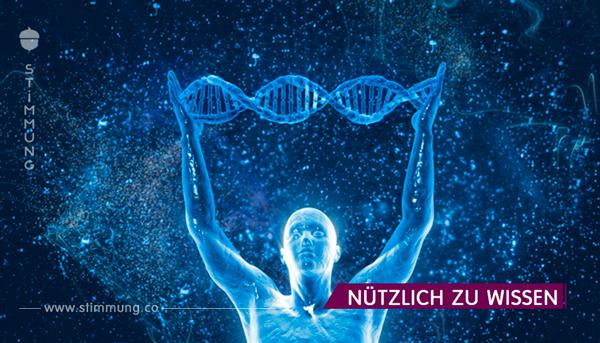 Interessante Fakten aus der Welt der Genetik