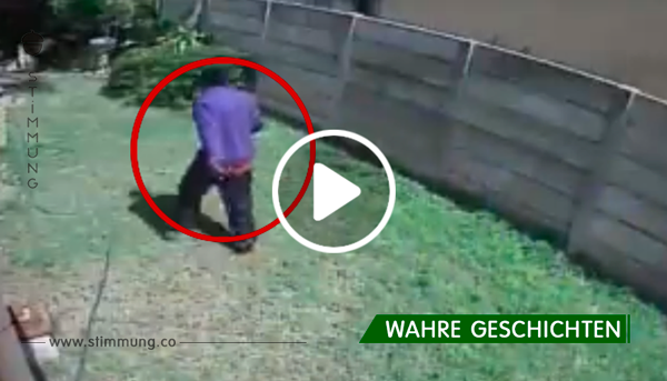 """Der Dieb """"fliegt"""" geradezu über den Zaun, als er von dem angsteinflößenden Hund flüchtet"""