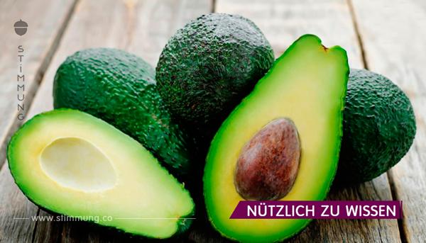 Nur 1 Stück Avocado kann die Nieren von Steinen befreien