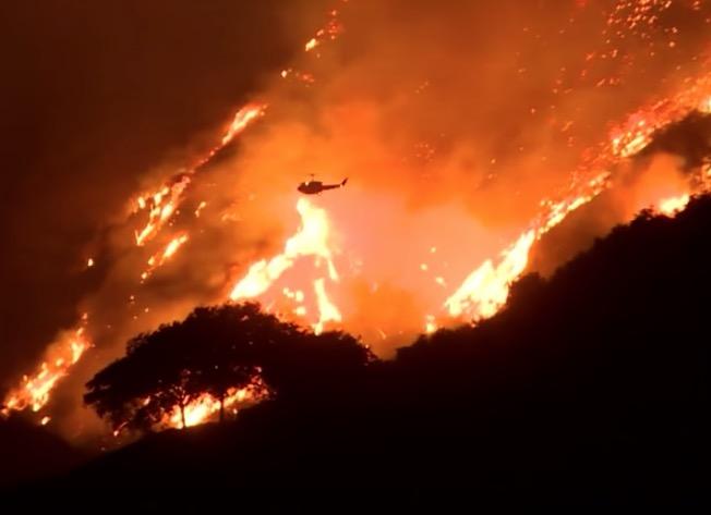 Video: Autofahrer rettet Häschen vor Tod in den Flammen.