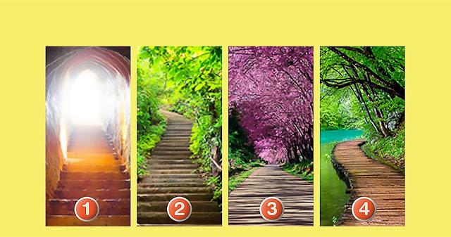 Welchen Weg würdest Sie gehen?