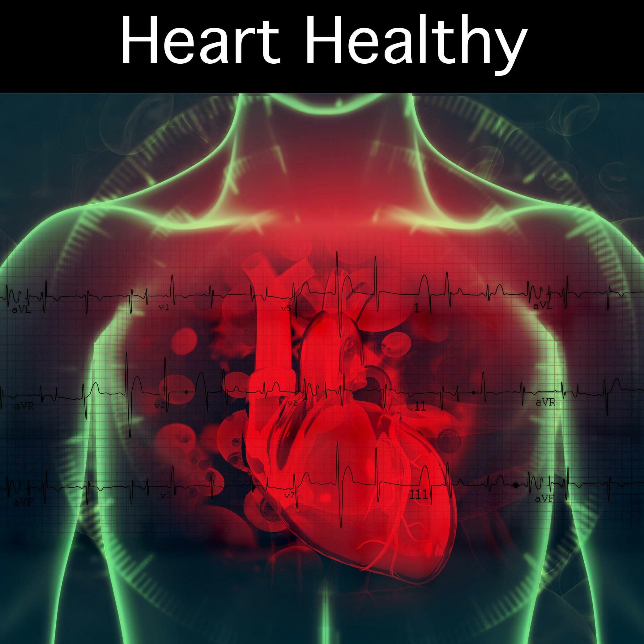 Ungewöhnlich Bilder Ihrer Organe In Ihrem Körper Zeitgenössisch ...