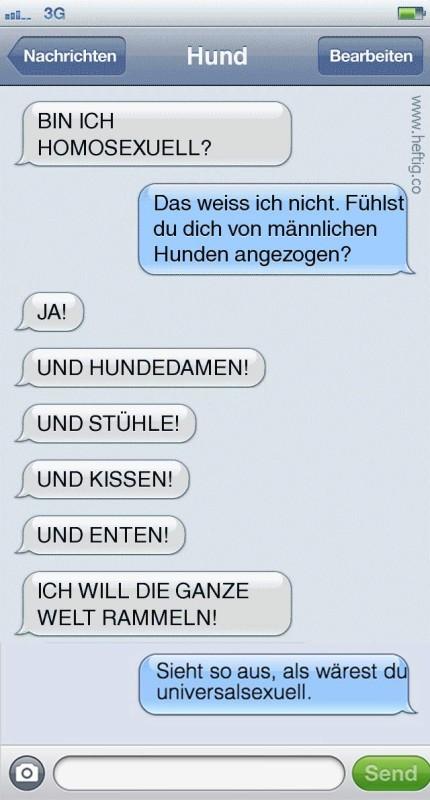 15 SMS, die Hunde schicken würden, wenn sie es könnten.