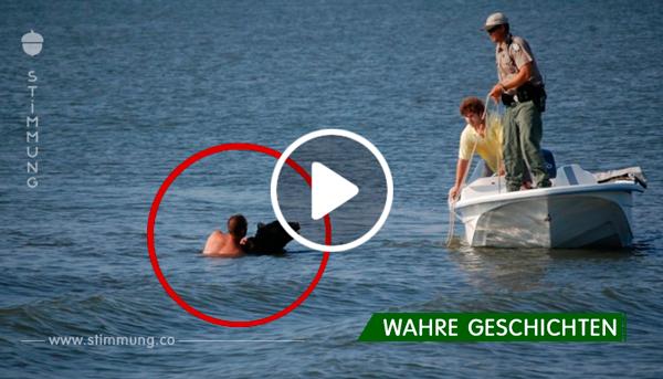 Dieser Mann rettete den sinkenden Bären und zog ihn aus dem Wasser. Unglaubliches Ereignis!