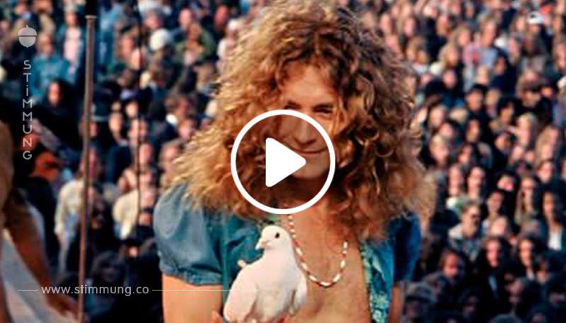 """Das harte Schicksal, an dem """"Led Zeppelin"""" zerbrach."""