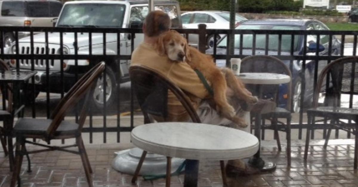 Die Frau schießt heimlich ein Foto, als sie sieht, was der Mann mit dem Hund vorm Cafe macht. Das geht ins Herz!
