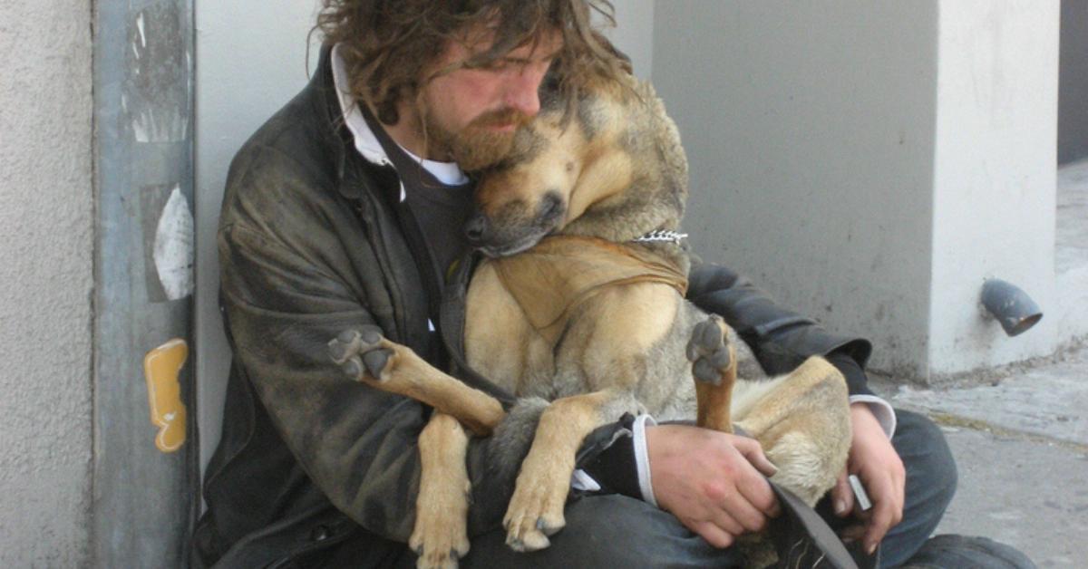 16 treue Hunde die in finsterster Stunde bei ihren Herrchen bleiben.
