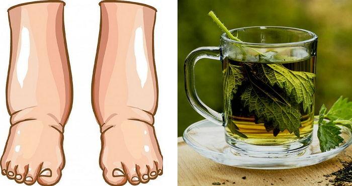Unglaublich! Was wird mit deinem Körper passiert  wenn du Tee aus Petersilie mit Zitrone und Honig trinkst?