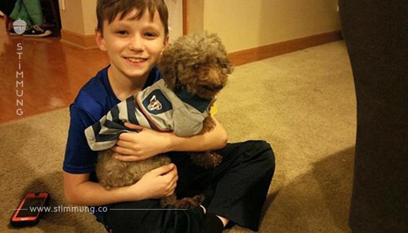 Junge darf im Tierheim aussuchen und wählt den ältesten Hund.