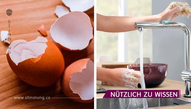 18 Dinge, die kategorisch nicht in der Spüle und der Toilettenschüssel abgewaschen werden können!