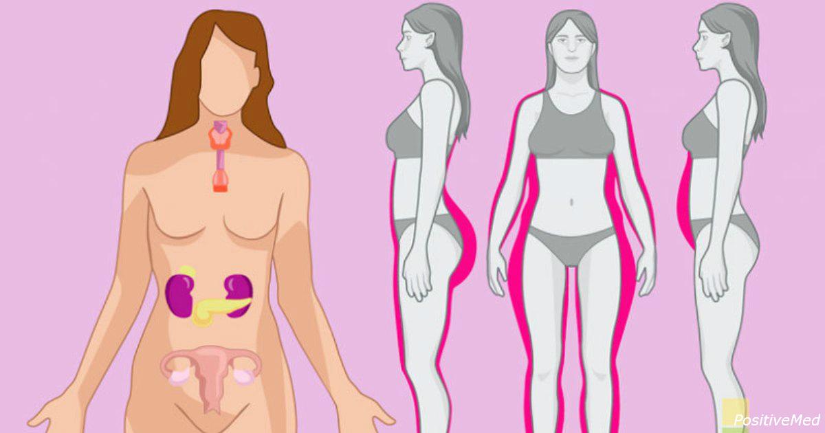 5 Pflanzen, die Ihre Hormone in Ordnung bringen können