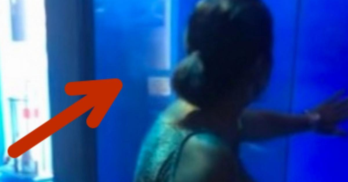 Die Frau klopft fest an die Scheibe des Haifischbeckens. 0:15 ist ihr aber eine Lehre!