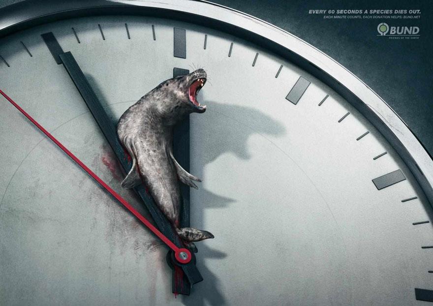 Starke Werbekampagnen über Tiere, die die bittere Wahrheit enthüllen!