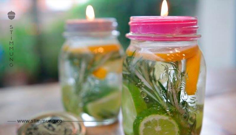 Stellt dieses Marmeladenglas nach draußen – und Mücken werden euch in Ruhe lassen