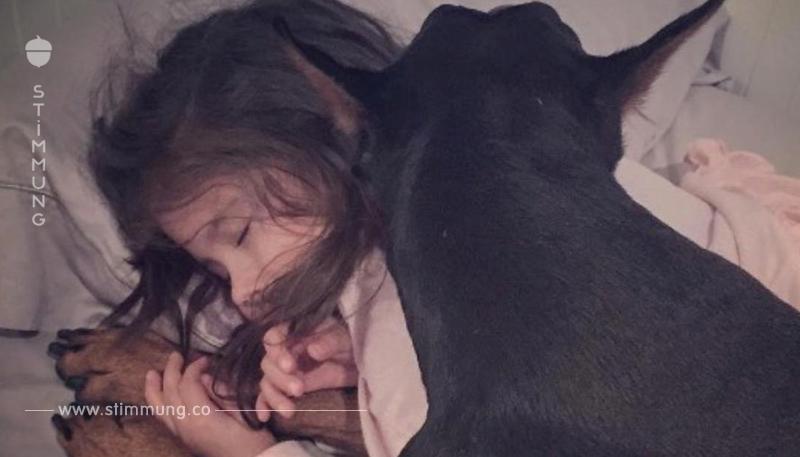 Der Dobermann legt sich zur schlafenden 5 Jährigen. Was die Mutter mit der Kamera festhält, bezaubert das Internet.