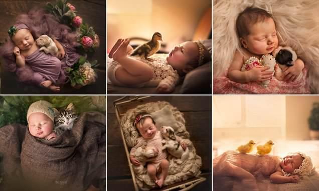 Umarmungen von Neugeborenen und Haustieren im Projekt eines Fotografen aus London!