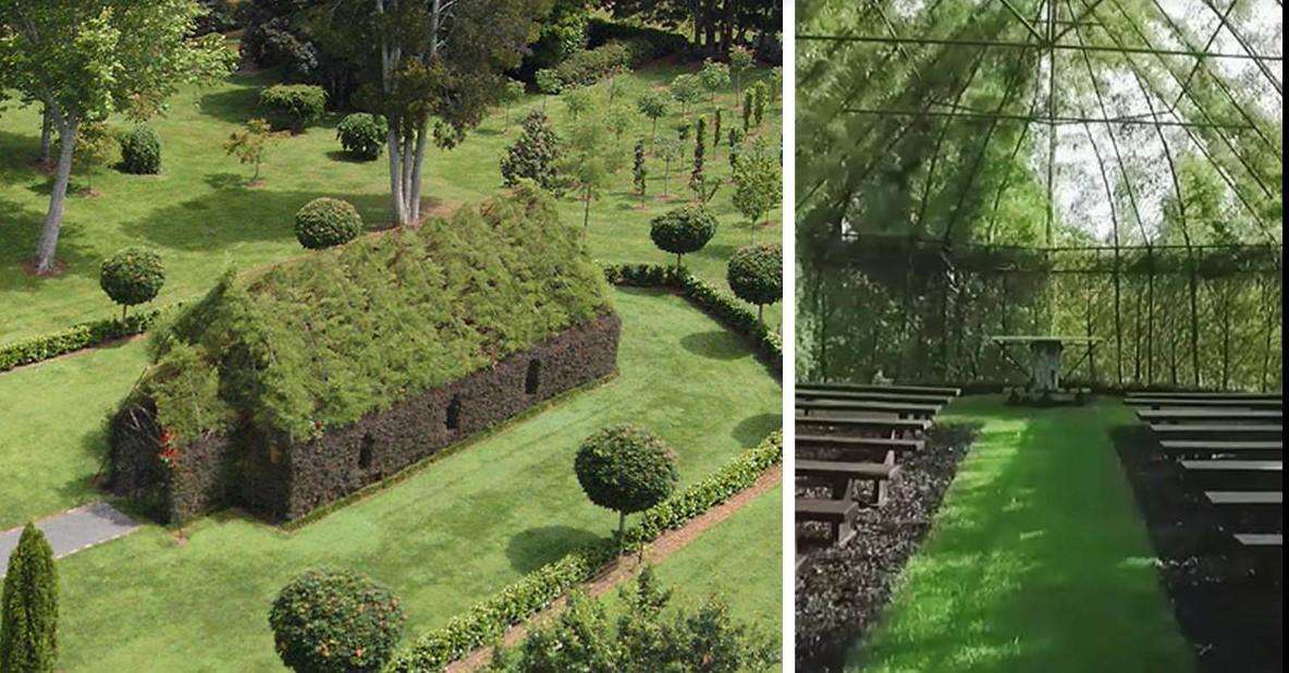 Der Mann verbrachte 4 Jahre damit, eine Kirche aus lebenden Bäumen zu erschaffen!