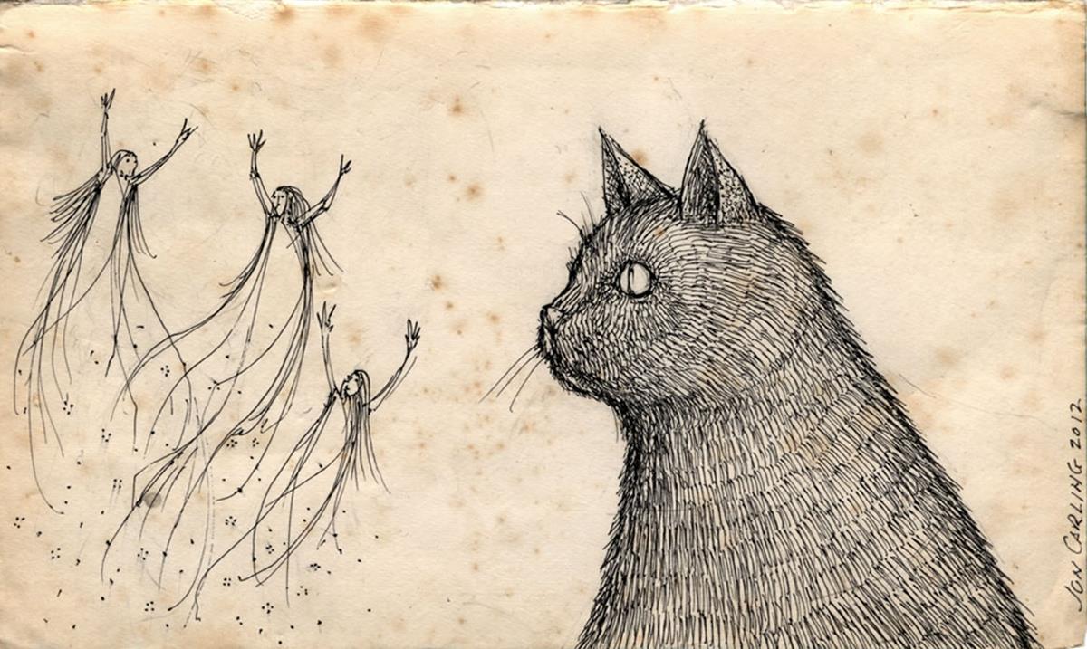 Können Katzen und Hunde