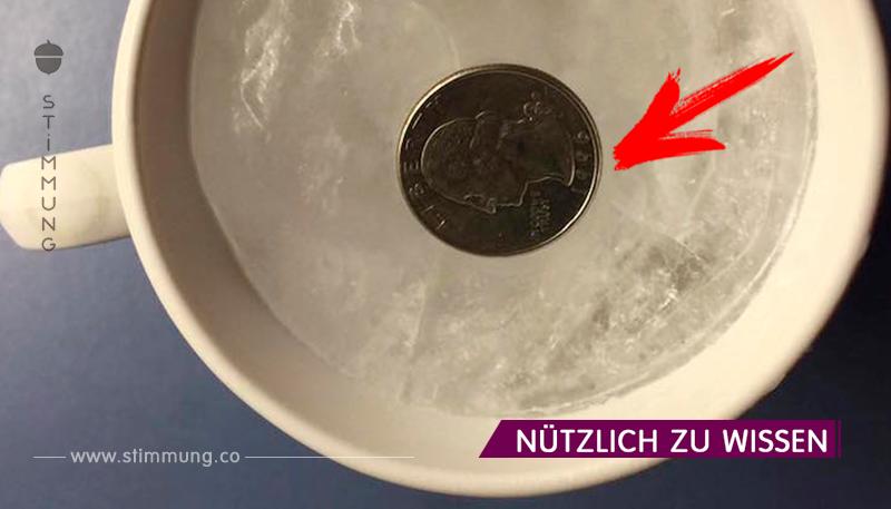 Mein Freund hat eine Münze eingefroren. Als ich herausfand, warum, fing ich an, es die ganze Zeit zu tun!