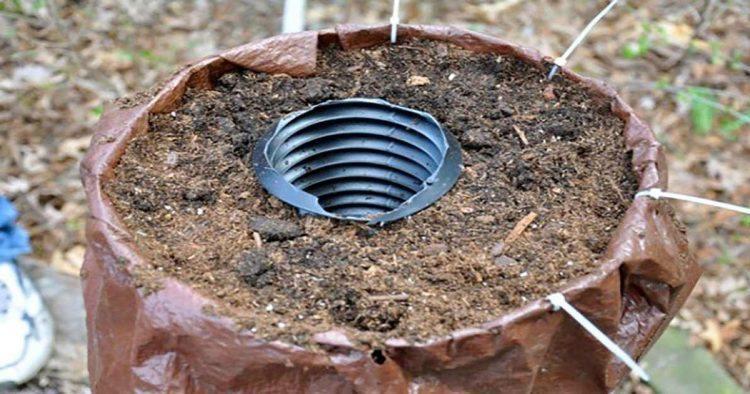 Resultado de imagem para self watering diy tower planter