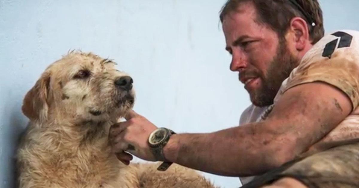 Der Athlet fütterte einen streunenden Hund. Aber er konnte sich nicht vorstellen, wohin es führen würde!