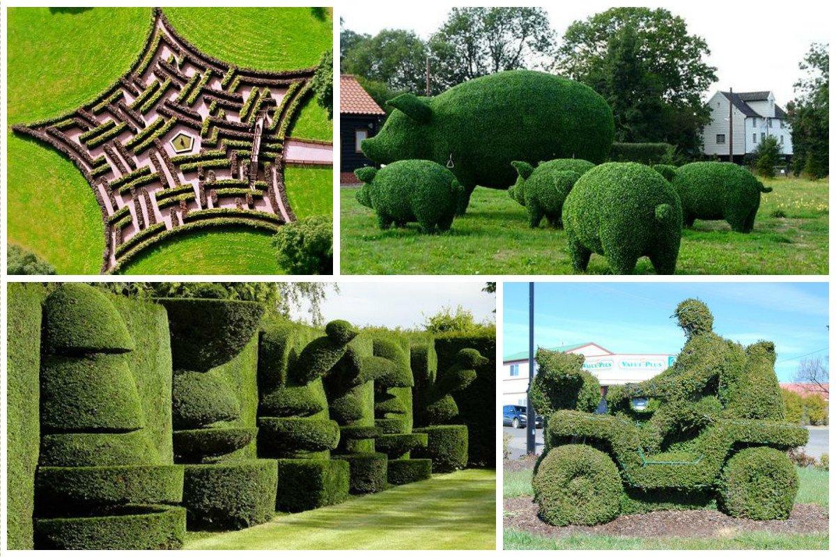 Diese Skulpturen wurden aus Büschen geschaffen - einfach fantastisch!