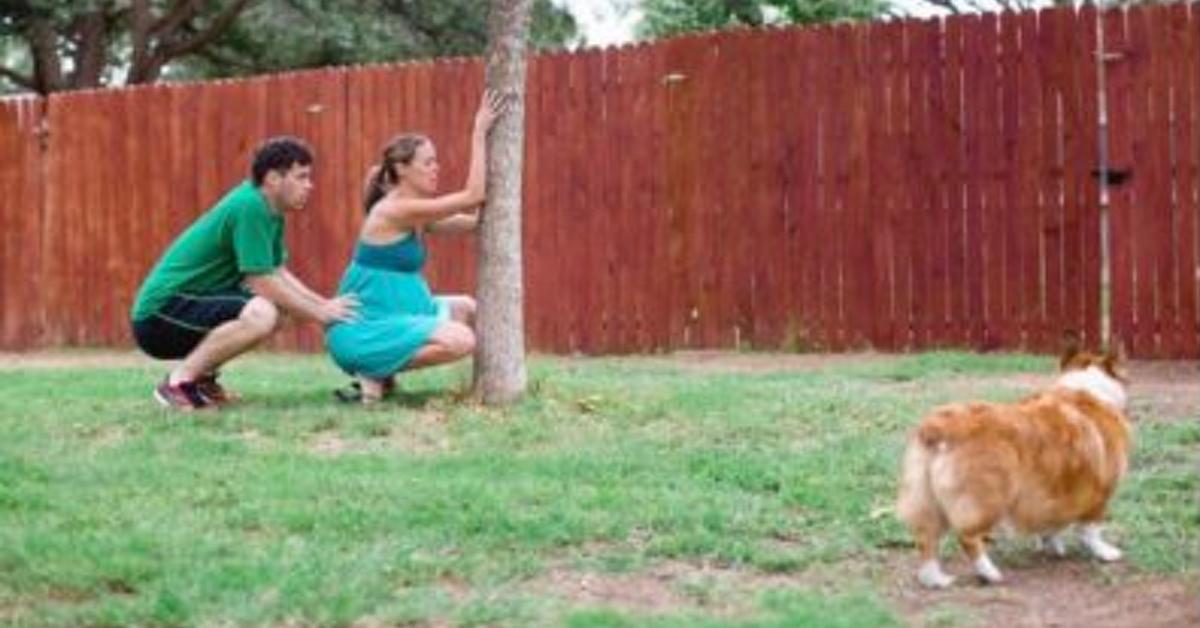 Kleiner Hund hilft seinem Frauchen durch die Geburtswehen.