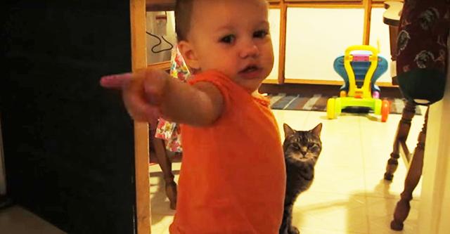 Freunde glaubten nicht, dass sein Baby mit einer Katze sprach. Vater hat dieses Video gedreht
