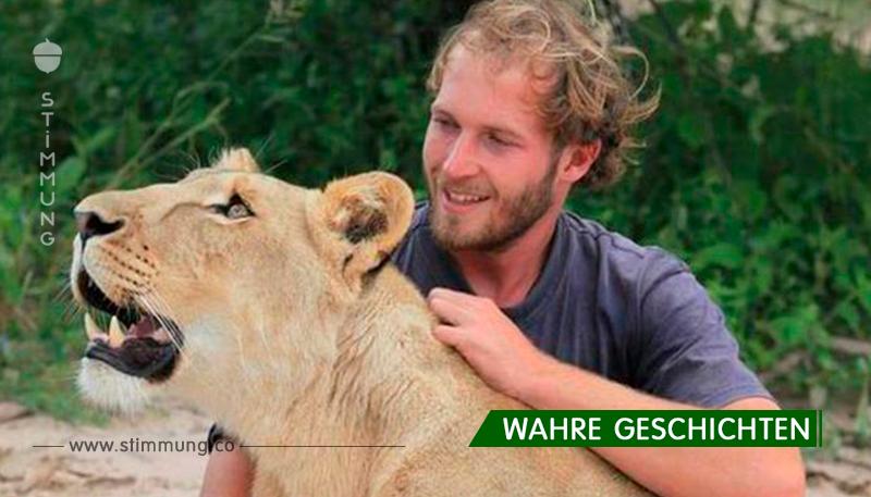 Ein schwacher Löwe, der der schon bereit war, zu sterben... aber das Baby wurde von Menschen gefunden ...
