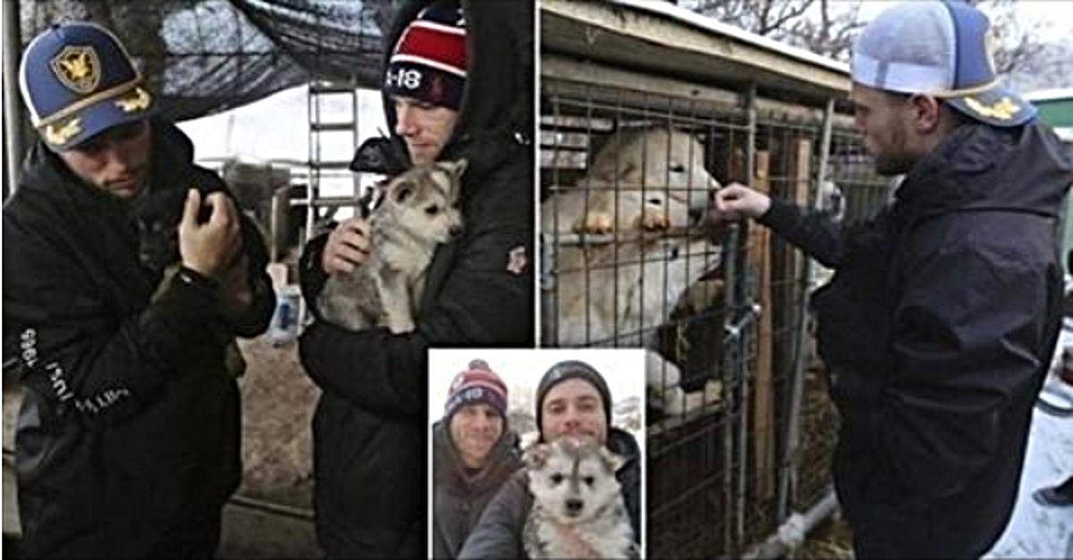 Aus Korea brachte dieser Olympier einen Welpen statt einer Medaille. Er hat mehr als 100 Hunde gerettet!