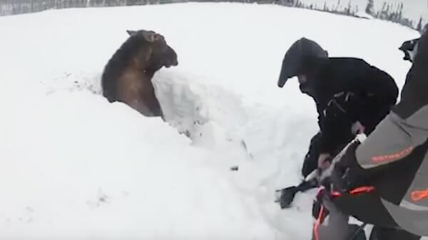 Die Jungs fuhren auf Schneemobilen, plötzlich sahen sie etwas im Schnee, näherten sich und wurden schockiert ...