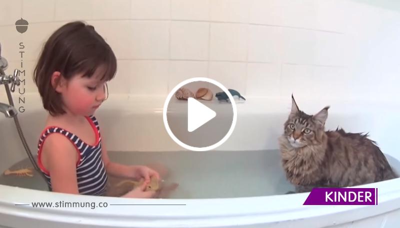 Diese Katze fand einen Zugang zu einem Baby mit Autismus. Schau sie dir einfach an!