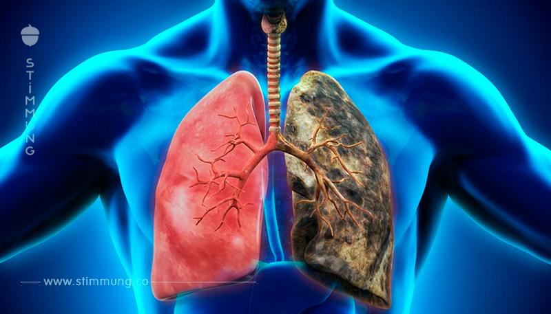 Ein Getränk, das die Lungen reinigt: Wenn Sie rauchen oder jemals geraucht haben - Sie sollten es unbedingt versuchen!
